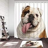 Juego de Cortinas de Ducha Antideslizantes para baño,Brown Dog English Bulldog Years Old in Front of Studio White Wrinkles Alfombrilla de baño y Cortina de Ducha Impermeable(180x180cm)