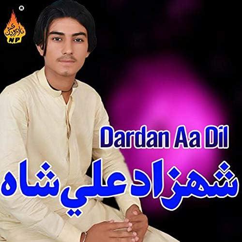 Shahzad Ali Shah