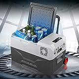 outingStarcase Frigorífico refrigerador automático Cooler 30/40 / 50L 12V Portátil Mini refrigerador Compresor Coche refrigerador refrigerador (Color Name : 30L)