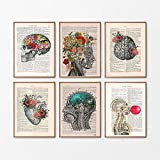 HUANGXLL Arte de anatomía Corazón Humano Cerebro Pulmones Arte de la Pared Pintura en Lienzo Carteles e Impresiones nórdicos Imágenes de Pared Decoración para consultorio médico-30x40cmx6 Sin Marco