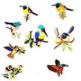 Milageto Parche Bordado con Apliques de 8 Piezas en Accesorios de Costura de Pájaro con Patrón de Bordado