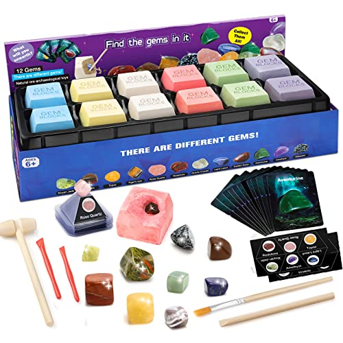 Sillbird Stem Toys Gem Dig Kit with 12 Real Gemstones - Science...