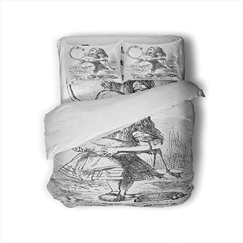 C COABALLA Colorful in Wonderland Illustration - Fictional Character,Duvet Cover Set Old-Fashioned Comforter Cover with Zipper Closure and 2 Pillow Shams Full Size