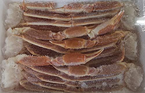 訳あり 生ずわい蟹 ( 6L ) 3kg ( 1肩約500g ) 約6肩 厳選商品 ずわい カニ 業務用