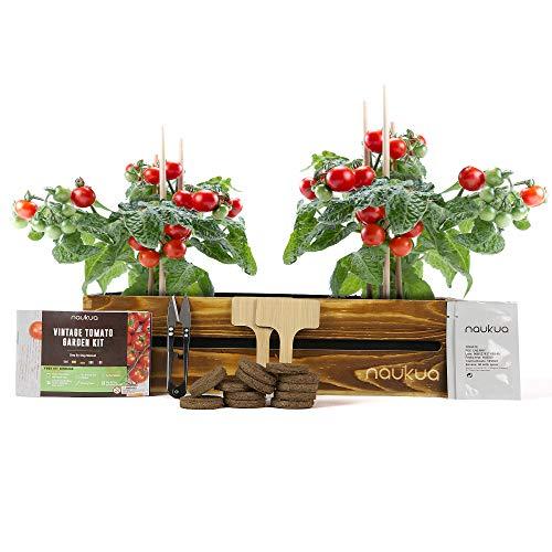 Mini Huerto Urbano Vintage de Tomates Cherry - Semillas Orgánicas de España - Kit Completo para Cultivar Tomates Cherry en Casa.