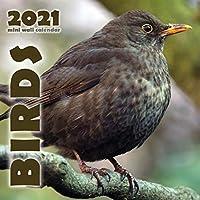 Birds 2021 Mini Wall Calendar