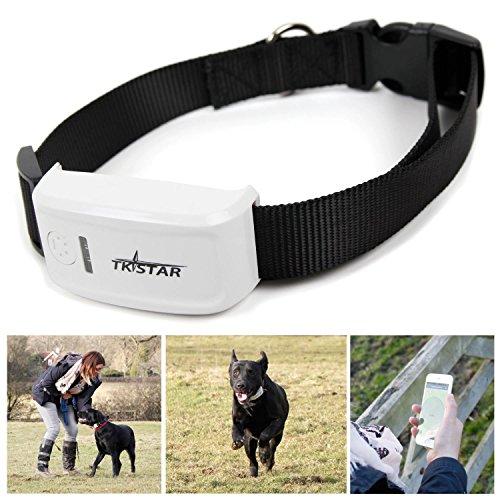 Anysun GPS Pet Tracker