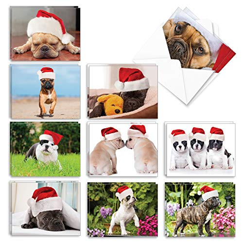 The Best Card Company - 20 Adorable Christmas Note Cards (4 x 5.12 Inch) - Bulk Puppy Dog Greetings, Assorted (10 Designs, 2 Each) - Beautiful Bulldogs AM6298XSG-B2x10