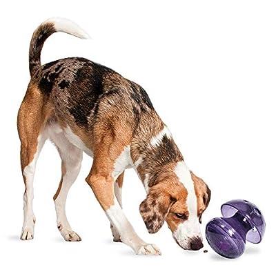 PetSafe Busy Buddy Magic Mushroom Dog Toy - Slow Feeder - Treat Dispenser by Toys & Behavior