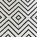 Zebra 12 x 12 Ceramic Tile for Wall in White and Black