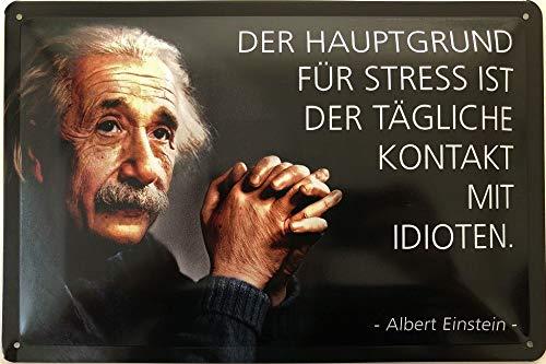 Deko7 Blechschild 30 x 20 cm Albert Einstein Spruch - Der Hauptgrund für Stress ist der tägliche Kontakt mit Idioten