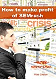 SEMrush: How to make profit of SEMrush? (English Edition)