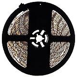 Viudecce Tira de Luz LED RGB 5M 5050 300LEDs SMD Flexible Impermeable Epoxi