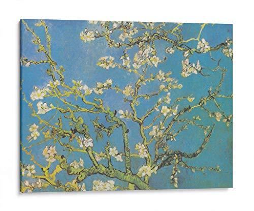 Cuadro 80x60 marca Canvas Lab