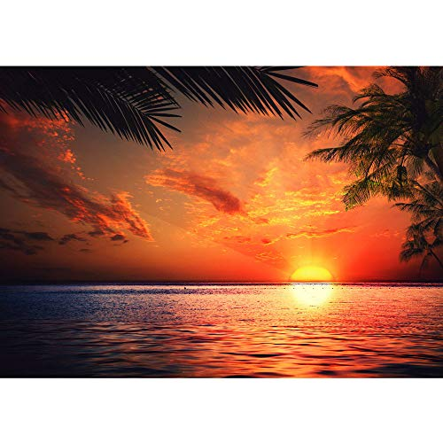 Vlies Fototapete PREMIUM PLUS 400x280cm CARIBBEAN SUNDOWN by liwwing (R) | Vliestapete Tapeten Bild Ornament Sonnenaufgang