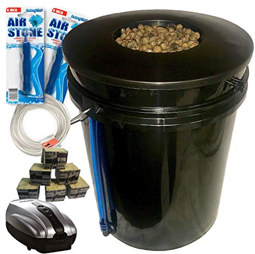 The Atwater HydroPod - DWC Deep Water Culture Garden System Kit - 5 Gallon Bubble Bucket - Bubbleponics - (Without Nutrients) Grow Your Own! Start Today!