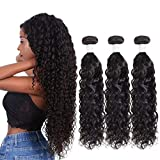 Peruvian Hair Bundles Remy Virgin Human Hair Bundles Wet and Wavy Water Wave Black Women Hair Real Hair 8a Hair 3 Bundles Unprocessed Virgin Hair Bundle 14 16 18 Inch NIUDINNG