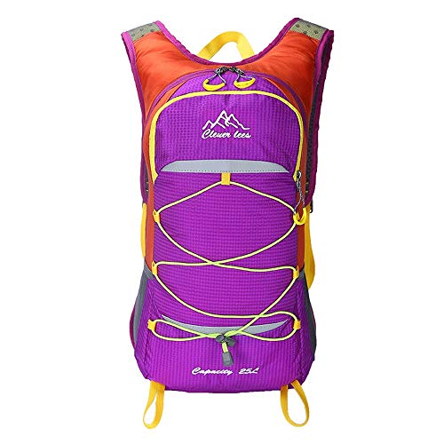 JTRHD Hydration Pack Backpacks 25-liter Large-capacity Cycling Backpack Bike Bag Riding Rock Climbing Breathable Lightweight (Color : Purple, Size : 28 * 48 * 16CM)