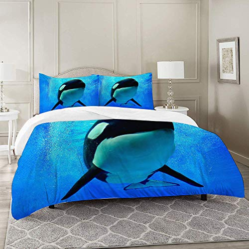 DARREOO Duvet Cover Set-Bedding,Blue Orca Killer Whale Swimming Underwater with Bubbles World Sea Orlando San Diego,for Single Double King Bed/Made of Ultra-Soft Microfiber