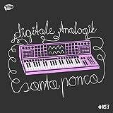 Santa Ponca (Rich Vom Dorf Remix)