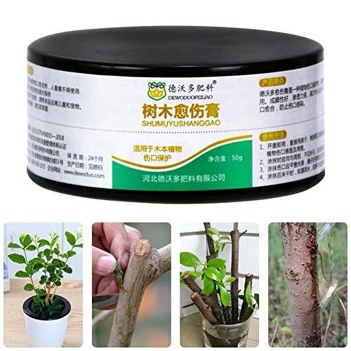 wonderday Bonsai Pruning Cutting Paste, Plant Healing Cream Tree Cut Wound Cream pour La Greffe De Plantes De Jardin Et Le Traitement des Plaies Brilliant Favorable