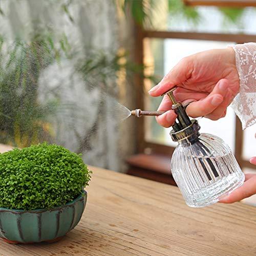 PPuujia Regadera de cristal retro para plantas o flores, botella de lavado a mano, color verde, regadera para jardinería (color: gris)