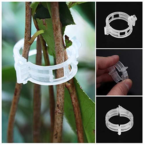 MuSheng(TM) 50 pcs Clips de Plantes Grimpantes de Jardin Clips de Vigne pour Le Soutien de Tiges de Plants de Tomates Souches et Tuteur de Pousse Droite pour Orchidée (Blanc)