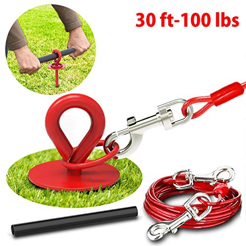 30 Ft Dog Tie Out Cable and Stake - Dog Yard Leash and Stake for Medium to Large Dogs Up to 100 lbs - Spiral Blade Dog Yard Stake for Loose Ground or Sandy Soil - Great for Outside Yard Beach Lawn