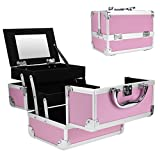 Portable Makeup Train Case,Aluminum Makeup Organizer Jewelry Cosmetic Box with 2 Trays, Mirror and Key Lock (PINK)
