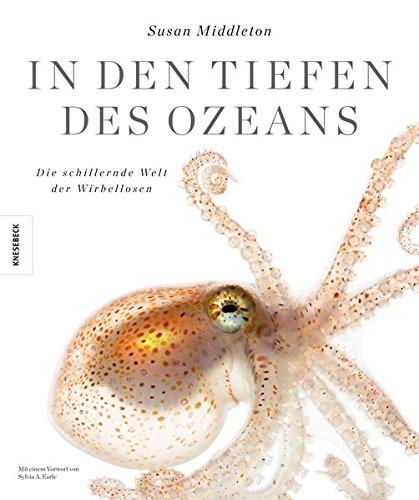 In den Tiefen des Ozeans: Die schillernde Welt der Wirbellosen