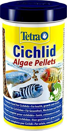 Tetra Cichlid Algae Pellets (Hauptfutter mit Spirulina Algen für die besonderen Ernährungsbedürfnisse von alles- und pflanzenfressenden Cichliden), 500 ml Dose
