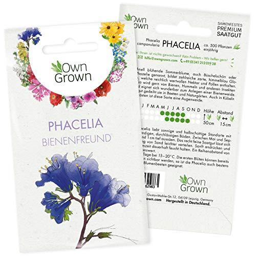 Phacelia Samen: Premium Bienenfreund Samen für ca. 500 blühende Phacelia Pflanzen – Schöne Phacelia Blumen Samen Balkon u. Garten Samen – Blumensamen, Blumenwiese Samen – Phacelia Saatgut von OwnGrown