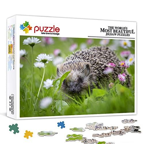 1000 pezzi di mini puzzle per adulti Piccolo simpatico porcospino Puzzle classico Puzzle giocattolo gioco impegnativo (38x26cm) Puzzle per adulti 1000 pezzi