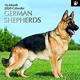 2020 Wandkalender - Schäferhund-Kalender, 30 x 30 Zentimeter Monatsansicht auf Englisch, 16-Monat, Hunde und Haustiere Thema, Enthält 180 Anzeigen-Aufkleber