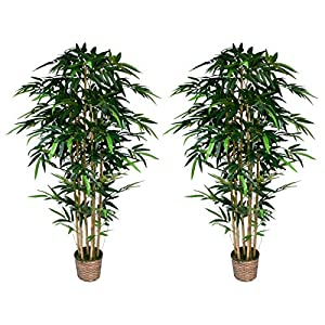 Vintage Home Sunny Isles A Set of Two 72″ Artificial Bamboo Tree's, Green