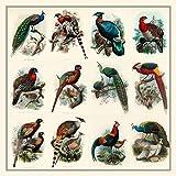 Meishe Art Poster Print Birds Peacock Rooster Pheasant