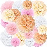 Peach Light Pink Tissue Paper Flowers Pom Poms Wedding Party Decorations, 20 pcs