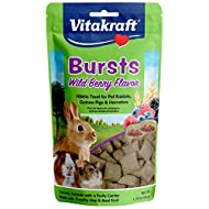 Vitakraft Bursts Wild Berry Flavor Treats for Rabbits, Guinea Pigs & Hamsters, 1.76 oz, Brown