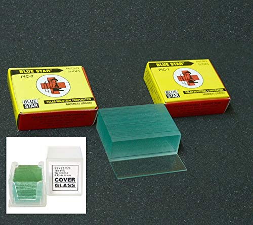 Aggstrom 50 Pre-Cleaned Blank Glass Microscope Slides and 100pc Pre-Cleaned Square Glass Cover Slips Coverslips