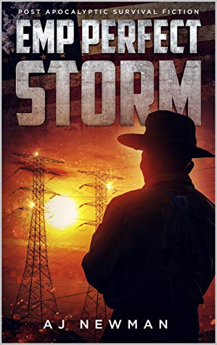 EMP Perfect Storm: Book 1 - Post Apocalyptic Survival Fiction by [AJ Newman]