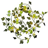 Omika Grapevine Garland Green Leaves String Lights - Hanging Vine Artificial Ivy Fairy Lights - 6.56ft/2m 20 LED Flexible Copper Battery Powered - for Patio Decor Home Bedroom Garden Decorations