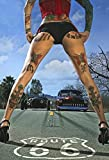 Cartel de chapa NWFS FS Pinup Tattoo Girl en la Ruta 66, cartel de metal, cartel de metal curvado, l...