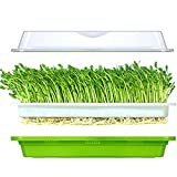 LeJoy Seed Sprouter Tray Soil-Free Food Grad PP Healthy Wheatgrass Grower with Cover and 2 Size Hole