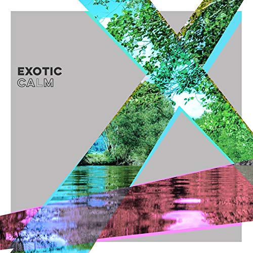 # 1 A 2019 Album: Exotic Calm