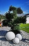 Trango 3er Set in 20/25/30cm Durchmesser 202530G IP65 Gartenkugel *Nature* Kugelleuchte in Granitstein-Optik mit ca. 5 Meter IP44 Zuleitungskabel Kugellampe, Gartenleuchte, Außenleuchte, Leuchtkugel