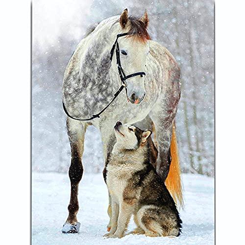 punto de cruz kit completo para AdultosAnimal caballo Bordado con hilos y tela diy 11ct Lona Preimpresa kits impresos patrón de costura cruzada para decoración del hogar-40×50cm