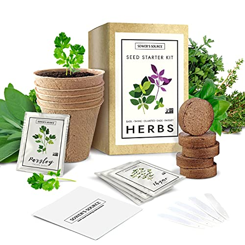 Indoor Herb Garden Starter Kit – Non GMO – Seed Packets, Pots, Markers, Soil Mix – Fresh Basil, Cilantro, Parsley, Sage, Thyme
