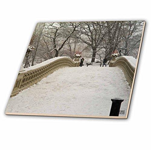 3dRose ct_10313_1 Snow Blizzard in Central Park Manhattan New York City-Ceramic Tile, 4-Inch