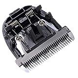 Basage Haute Qualité Noir CéRamique Titane Couteau Pet Chien Cheveux Tondeuse Lame Clipper TêTe pour BaoRun P2 P3 P6 P9 S1 LILI ZP-295 ZP-293 4