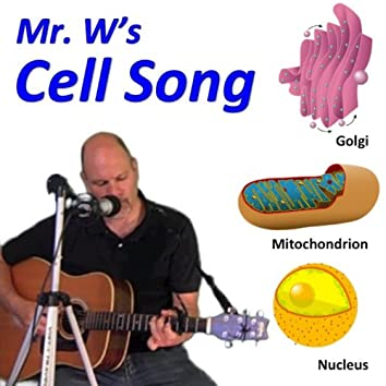 The Cell Song